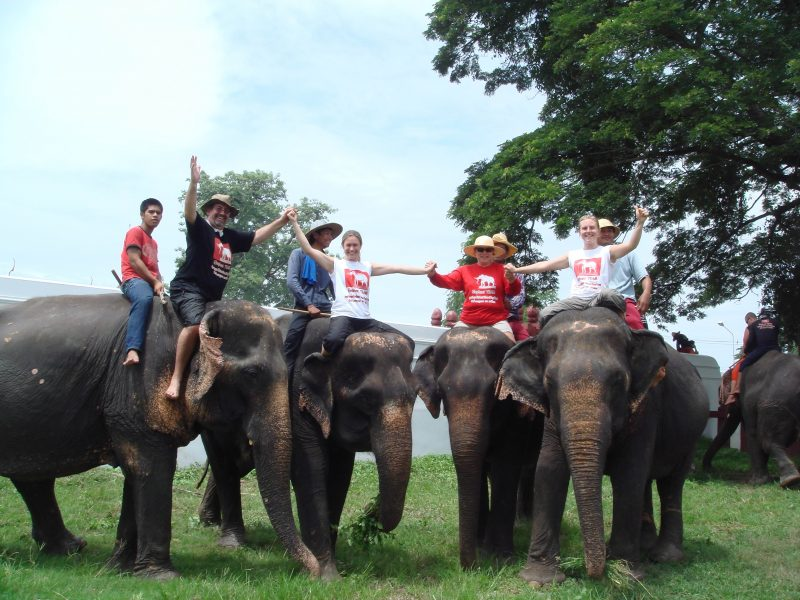 working elephant village. Our guests having a great time with our elephants