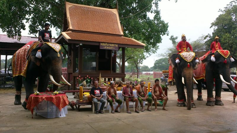 working elephant village