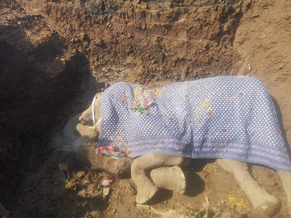 Sinuwan and Chankhapoh's baby in their physical resting place